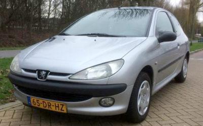 Peugeot 206 1.1 XN 3D 1999 Grijs